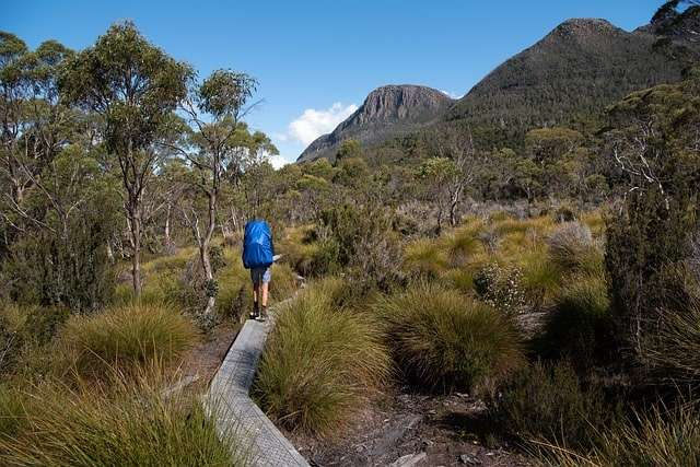 viaggi a piedi overland track tasmania