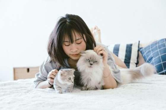 House Sitting Ragazza gira il mondo gratuitamente prendendosi cura della casa e degli animali di altre persone mentre queste sono in vacanza