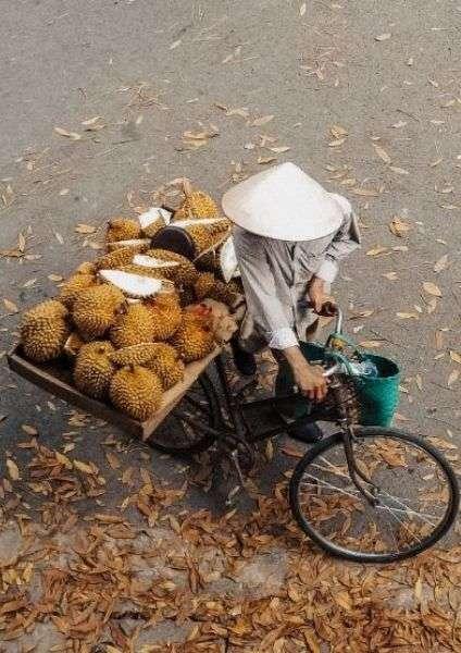 Durian, Asia, cibo tipico