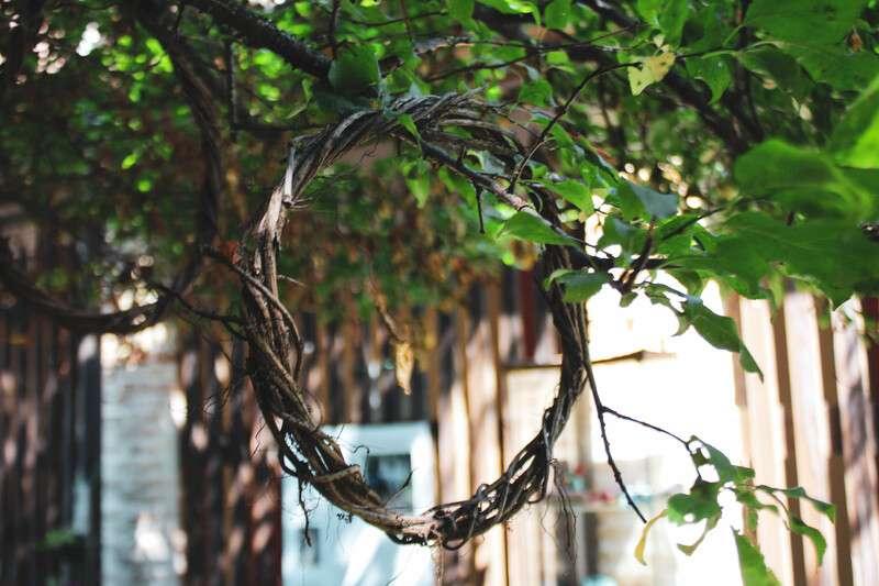 Cosa fare e cosa vedere a Chioggia: in foto ramoscelli di albero piegati e intrecciati per formare un cerchio.
