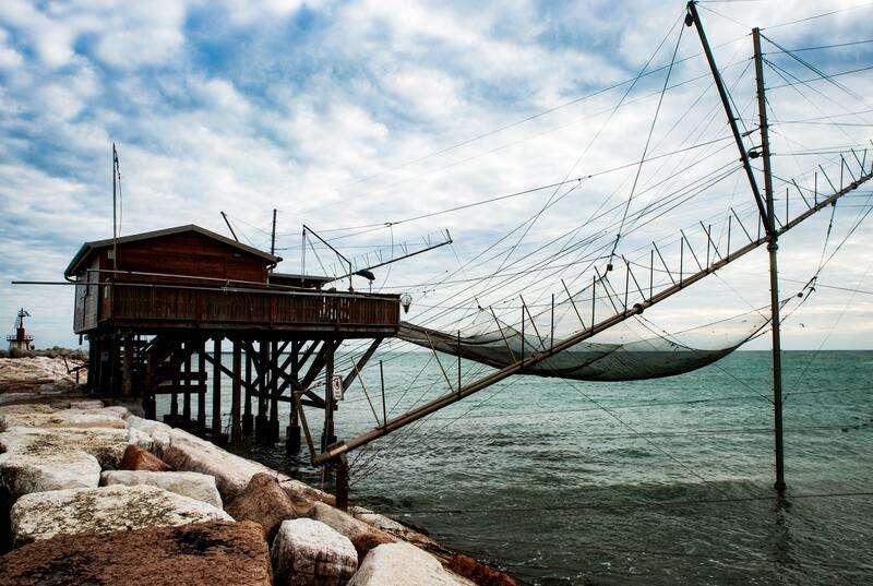 Cosa fare e cosa vedere a Chioggia: allevamento e pesca